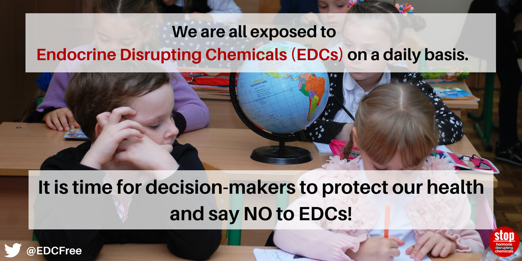 EU fitness check on endocrine disruptors must lead to urgent, protective action