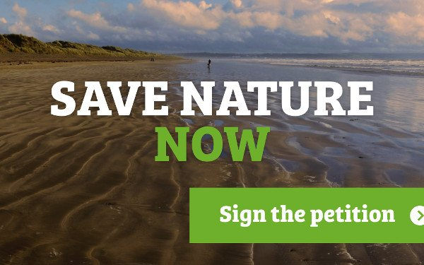 NGOs call for urgent action from UK Government to improve 'State of Nature'
